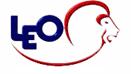 LEO Consulting.net